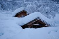 Snø_3